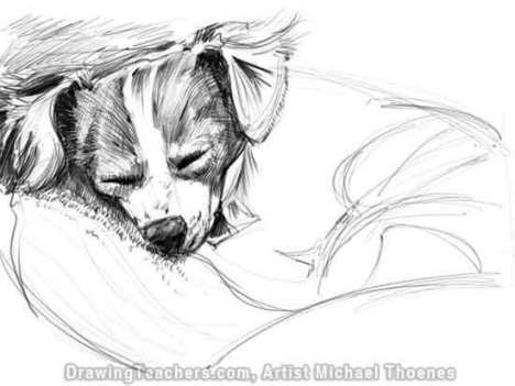 how to draw a wolf lying down step by step